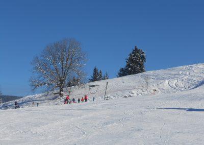 Photos_25-01-2014 (10)